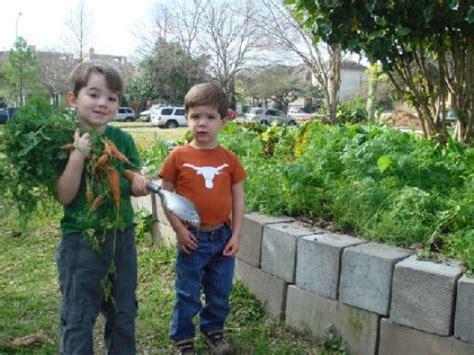 Houston Spring Vegetable Guide Houston Chronicle Houston Vegetable Gardening