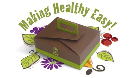 design criteria for lunch box brochure design for lunch box delivery service missing