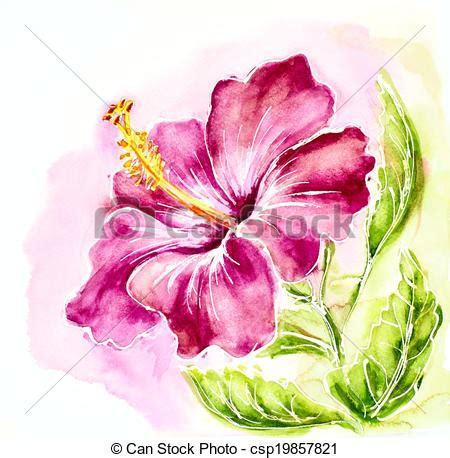 clip art de rose hibiscus aquarelle peinture
