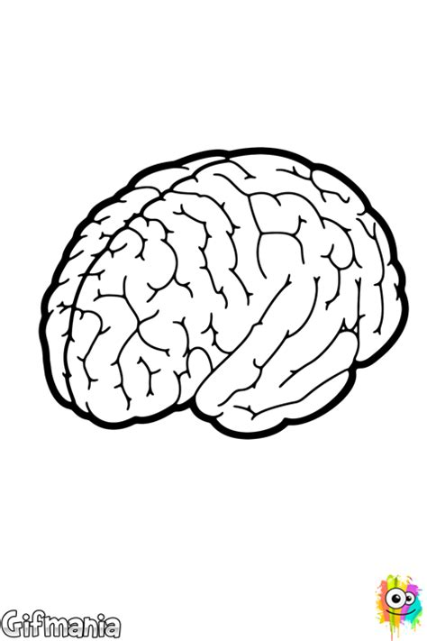 Inner Brain Coloring Page Coloring Pages Brain Coloring Pages