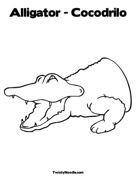 coloring page of american alligator american alligator coloring pages