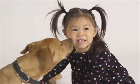why are puppy mills bad adorable toddler molly explains why puppy mills are bad