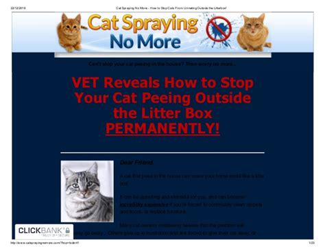 how to stop a cat from on the rug cat spraying no more how to stop cats from outside the li