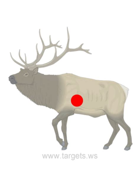 printable animal silhouette targets targets print your own shooting targets