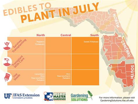 Vegetable Gardening In Central Florida Vegetable Gardening By Season Gardening Solutions
