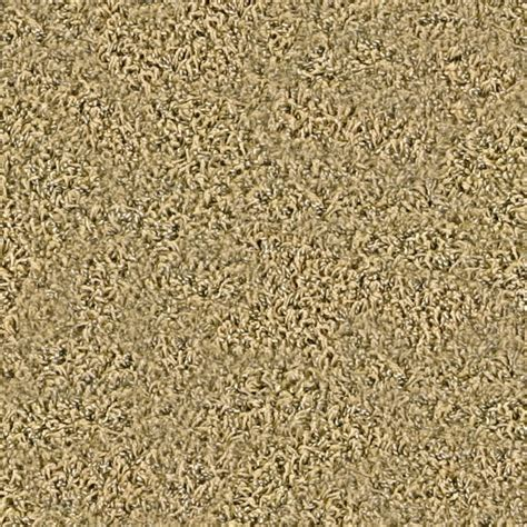 frieze carpet smartstrand carpet lowes frieze carpet 100 carpet one southton w southton
