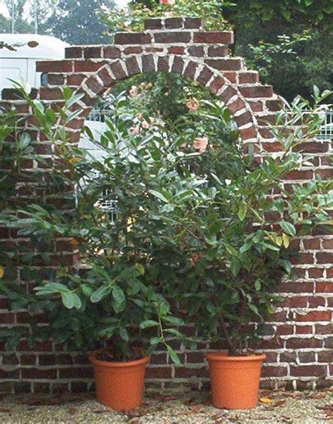 Ziegelsteinmauer Im Garten by Alte Mauerziegel Sch 246 Nes Draus Machen An Na Haus