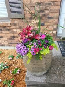 22 best teresa garden ideas images on pinterest