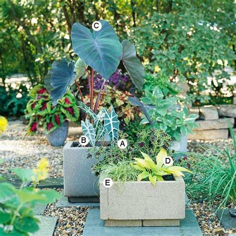 container garden recipes for shade gardens container