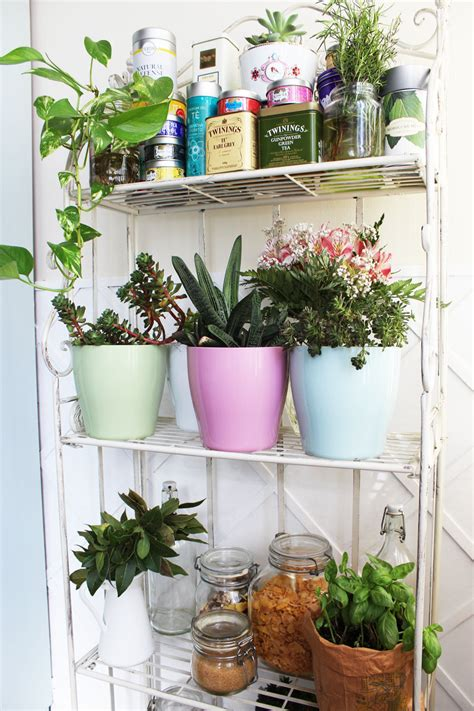 vasi veca un tocco di colore per rinnovare gli angoli di casa il