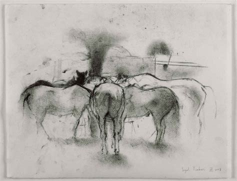 P Sigal Sketches by Gallery On Canvas And On