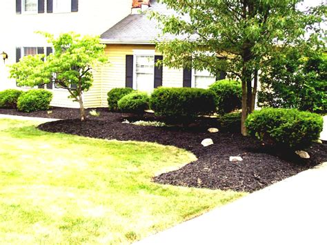 landscaping ideas for large backyards yard landscaping budget cheap ideas for large backyards