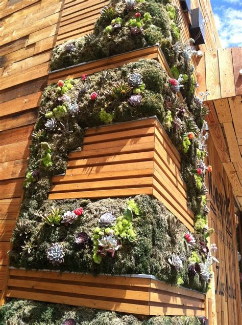 succulent vertical garden green design and building