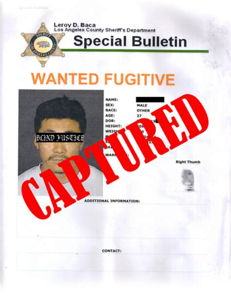 los angeles bench warrant search what does bench warrant returned mean 28 images what