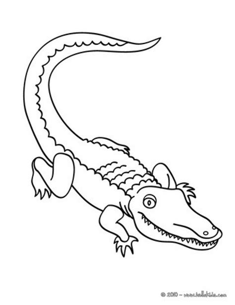 alligator coloring pages preschool get this easy preschool printable of alligator coloring