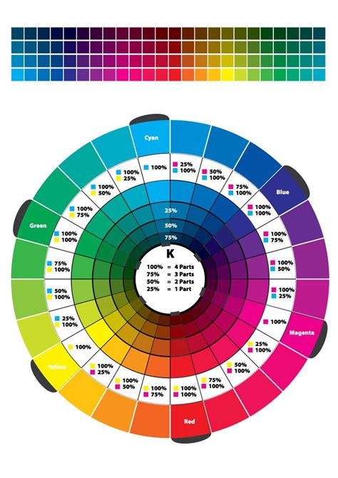 colour wheel   version   vector