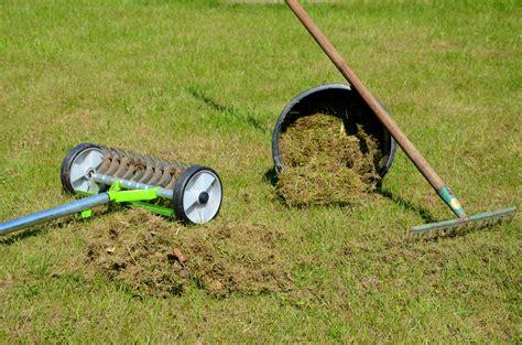 garten rechen vertikutieren top ten der wirksamsten pflanzenschutzma 223 nahmen