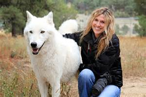 Backyard Dog Breeders A Week Wandering With The Wolves Aplaceintimephotos