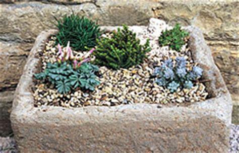 gardening gardening guides techniques make a mini alpine garden