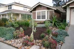 front yard without grass home design and decor reviews