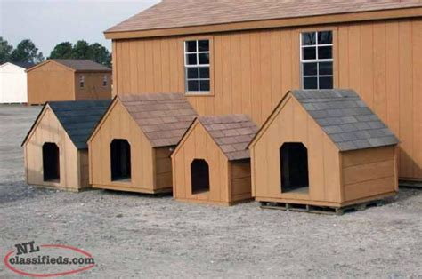 Dog Houses St Johns Newfoundland Labrador
