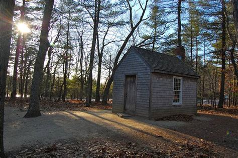 thoreau cabin spirit of henry david thoreau s walden lives on at state