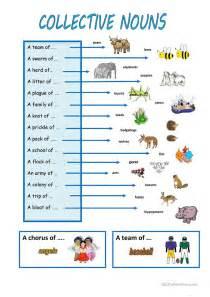 25 free esl collective nouns worksheets