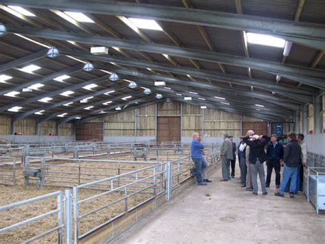 Sheep Shed Designs by Lambing Shed Layouts 15 X 15 Shed Blueprints