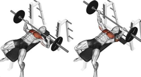 how to get your bench press max up fitness workouts exercises your workoutbox