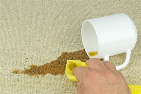 remove coffee stains from fabric sofa smart tips on how to remove upholstery stains kovi