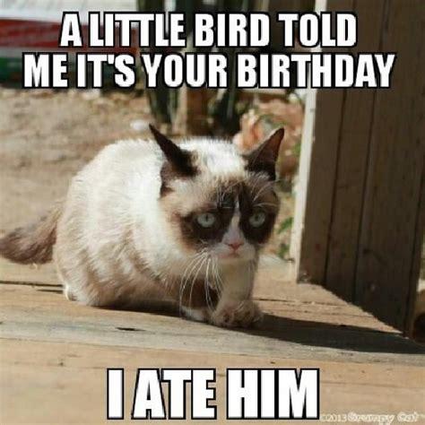 Grumpy Cat Happy Birthday Meme - grumpy cat birthday