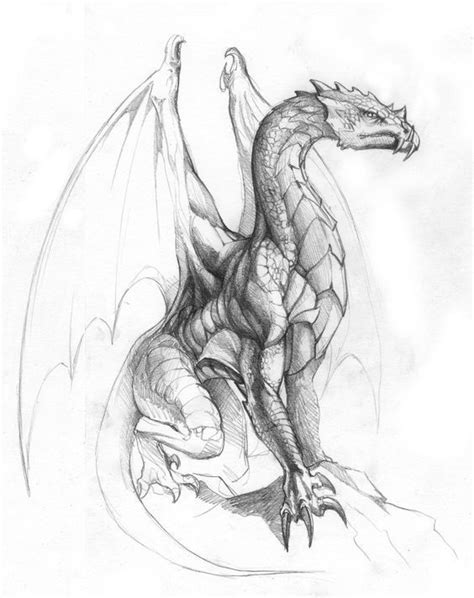 colour my sketchbook epic 1974061779 best 25 dragon tattoos ideas on dragon tattoo colour dragon tattoo designs and