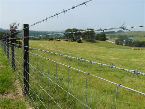 steel wire fence 200m reel mild steel galvanised ds barbed wire smith fencing