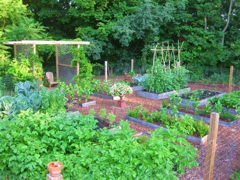 Kitchen Garden Design Ideas by The Easy Kitchen Garden