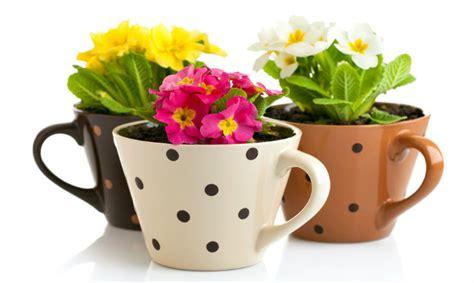 mandare fiori all estero arredare casa fai da te 3 idee per vasi da fiori