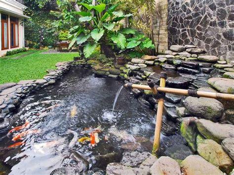Water Heater Kolam Ikan 40 gambar kolam ikan minimalis kolam ikan koi kolam ikan