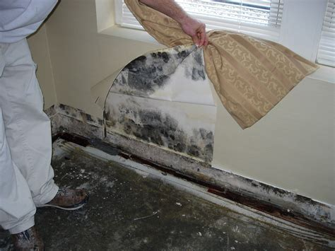 House Smells Musty Do I Mold by Uncategorized Mr Fix It Mike Home Services