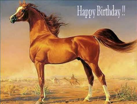 Horse Birthday Meme - happy birthday horse card