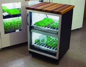 Hydroponic Indoor Herb Garden The New York Green Advocate Haute Hydroponics