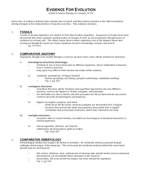 Evidence Of Evolution Worksheet Answers by Evidence For Evolution Worksheet Photos Getadating