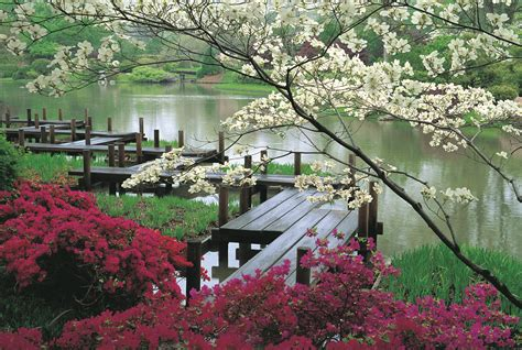 Flower Garden Japan 10 Japanese Gardens From The Heaven Youramazingplaces