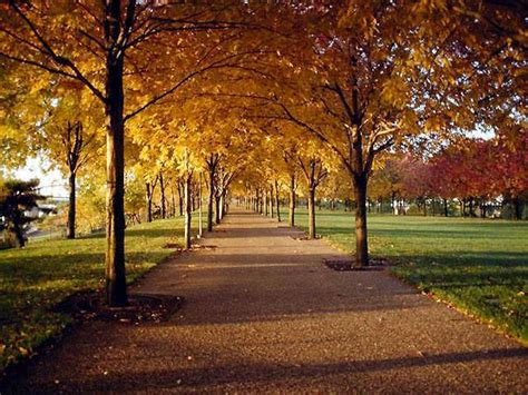 la camino los caminos hermosos mundo taringa