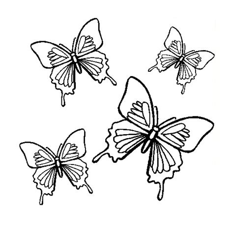 coloring pictures of small butterflies free butterfly coloring pages 4 butterflies flight
