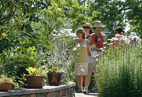 Gardens Gorham Maine by Of Plants Flock To The Hill The Portland Press