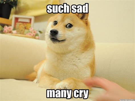 New Doge Meme - sad doge