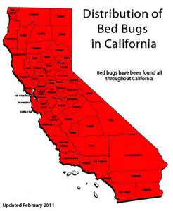 Bed Bug Infestation Map Cisr Bed Bugs