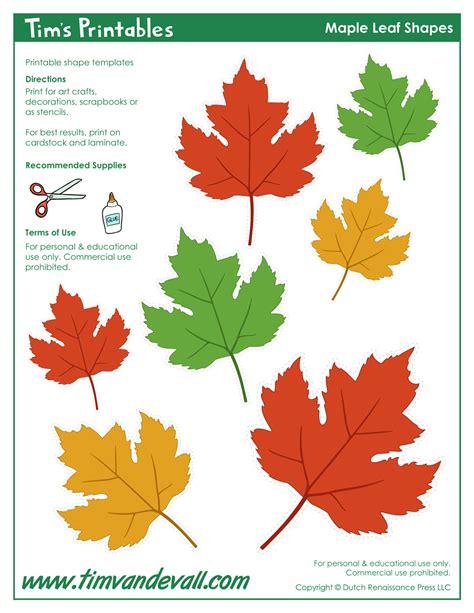 free printable maple leaves maple leaf templates tim van de vall