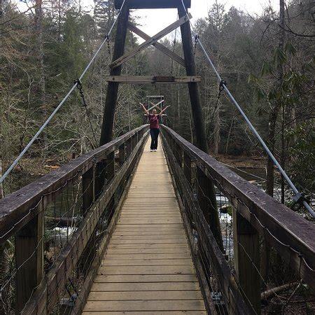 swinging bridge blue ridge 蓝岭 喬治亞州 toccoa river swinging bridge 旅遊景點評論