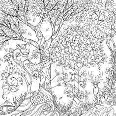 secret garden colouring book angus and robertson 1000 images about coloring pages on dover