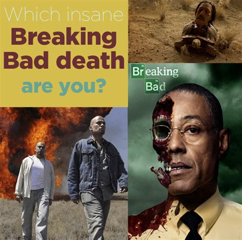 Todd Breaking Bad Meme - which insane quot breaking bad quot death matches your personality
